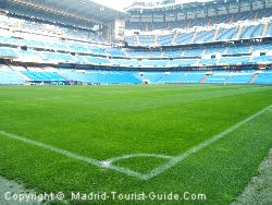 Real Madrid Pitch